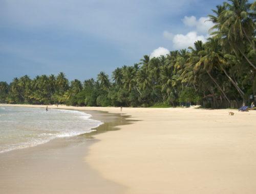 Sri Lanka en amoureux-min